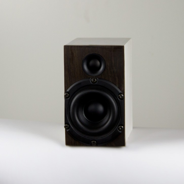Microspeaker µ Surround